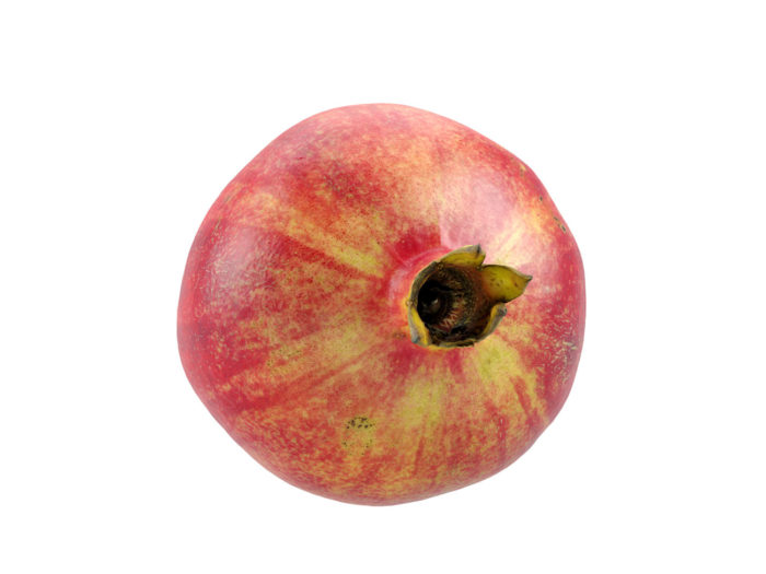 top view rendering of a pomegranate 3d model