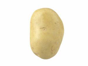 Potato #1