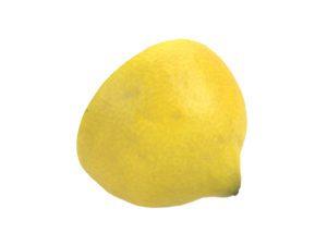 Lemon Half #4