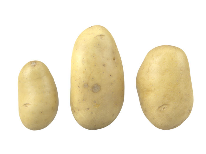front view rendering of a set of three different potato 3d models