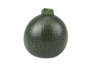 Round Zucchini #1