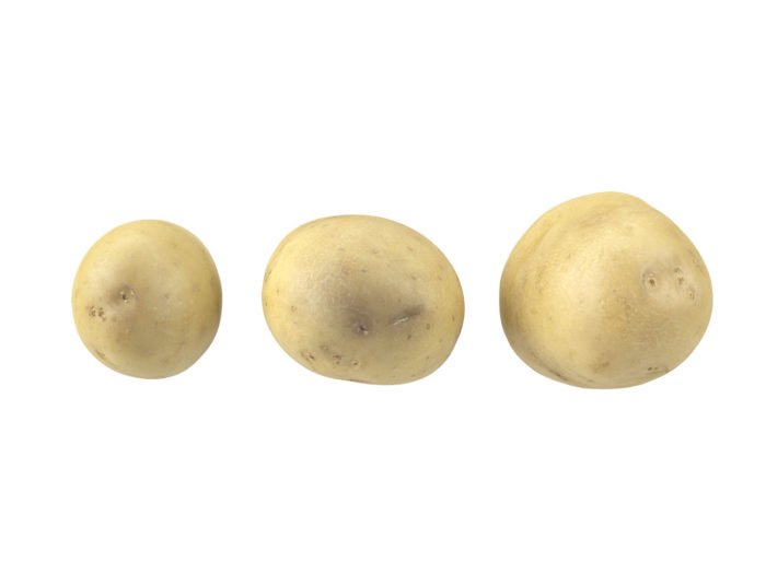top view rendering of a set of three different potato 3d models