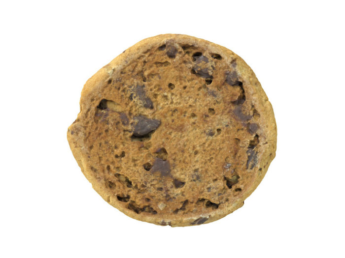 bottom view rendering of a chocolate chip 3d model