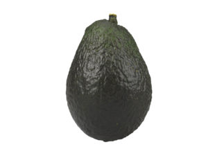 Avocado #1