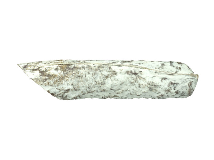 side view rendering of a salami 3d model