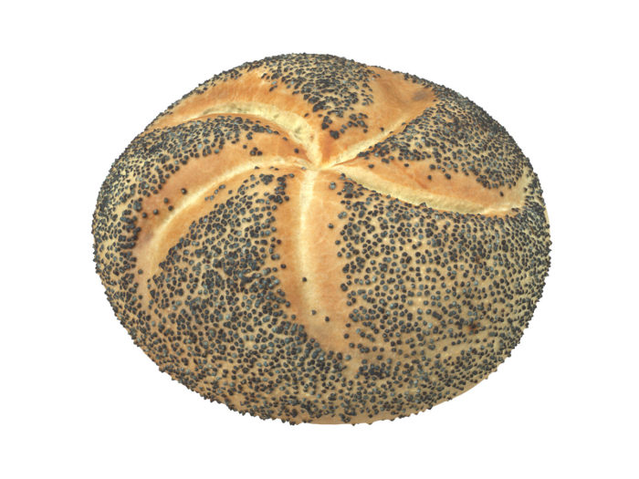 perspective view rendering of a poppy seed bread roll 3d model