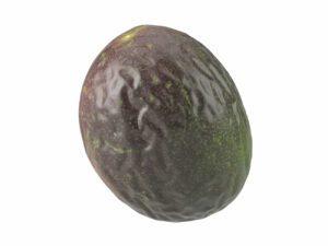 Passion Fruit #1
