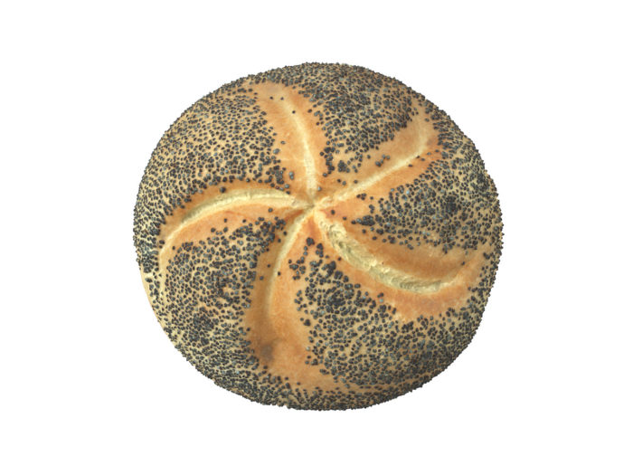 top view rendering of a poppy seed bread roll 3d model