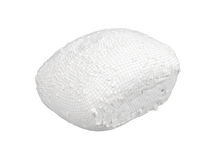 wireframe rendering of a seeded bread roll 3d model