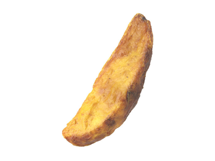 perspective view rendering of a fried potato wedge 3d model