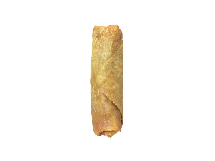 side view rendering of a mini springroll 3d model