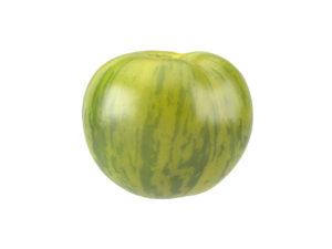 Green Zebra Tomato #1