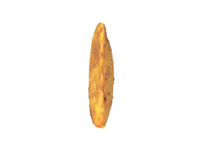front view rendering of a fried potato wedge 3d model