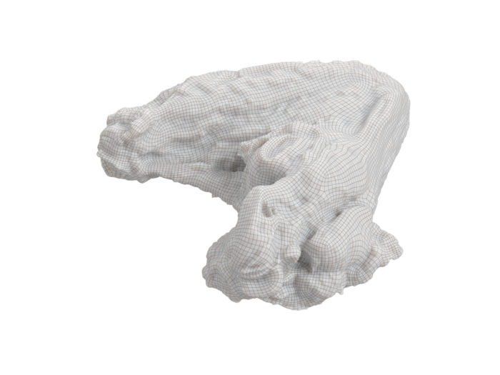 wireframe rendering of a grilled chicken wing 3d model