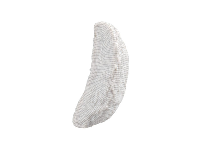wireframe rendering of a fried potato wedge 3d model