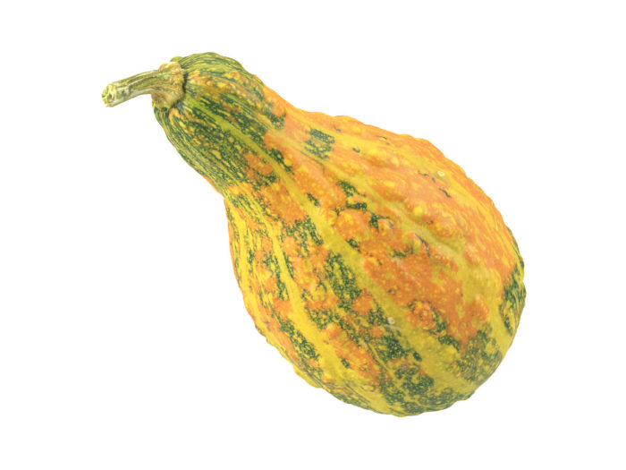 perspective view rendering of a decorative gourd 3d model
