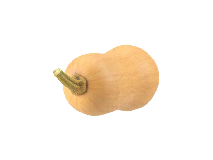 top view rendering of a butternut squash 3d model
