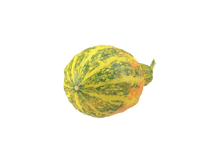 bottom view rendering of a decorative gourd 3d model