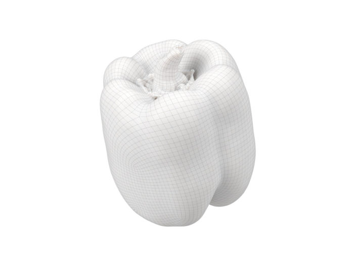 wireframe rendering of a bell pepper 3d model