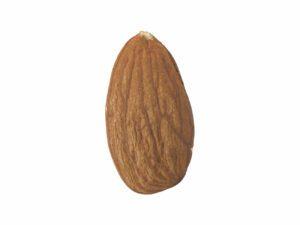 Almond #1