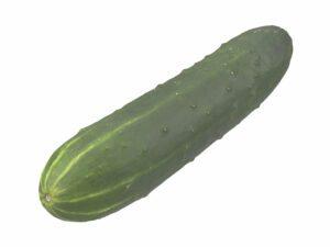 Cucumber #1
