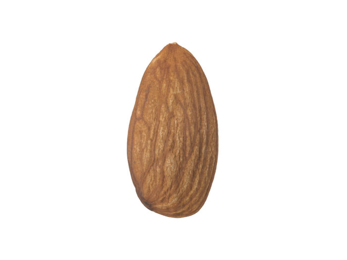 side view rendering of an almond 3d model