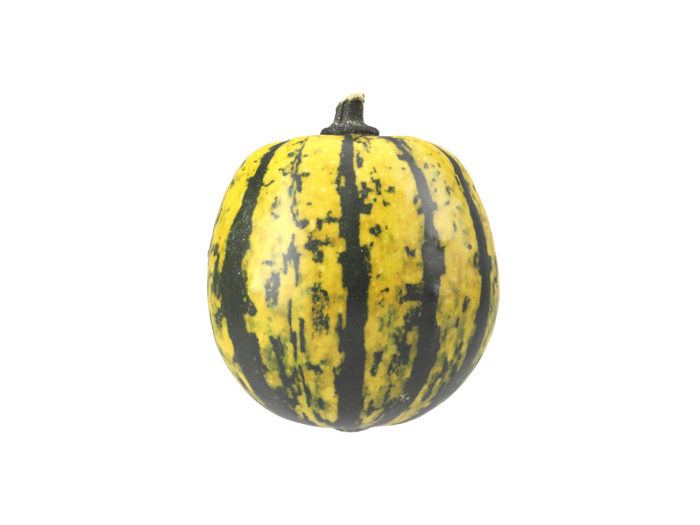 side view rendering of a decorative gourd 3d model