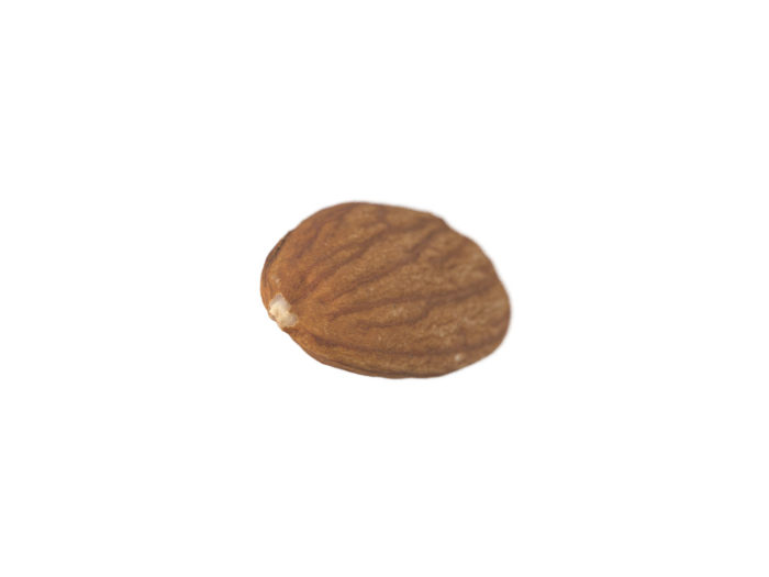 top view rendering of an almond 3d model