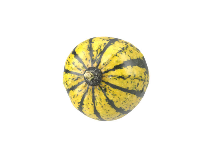 top view rendering of a decorative gourd 3d model