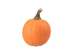 Decorative Gourd #3