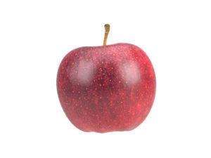 Apple #3
