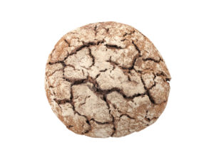 Einkorn Bread #1