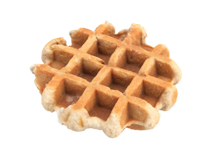 perspective view rendering of a waffle 3d model