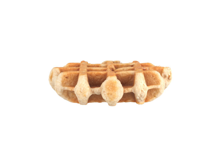 side view rendering of a waffle 3d model