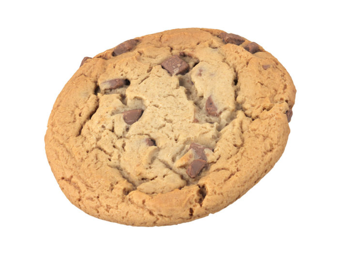perspective view rendering of a cookie 3d model