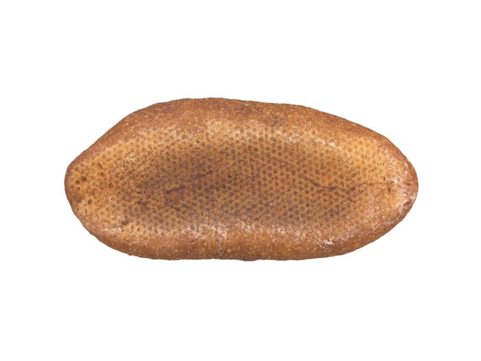 bottom view rendering of a bread 3d model
