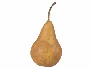 Pear #7