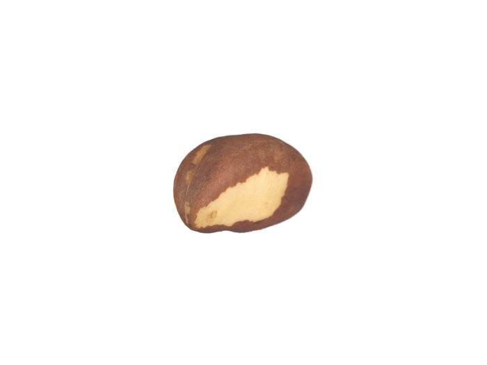 top view rendering of a brazil nut 3d model