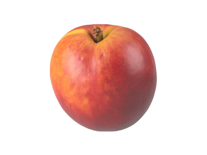 perspective view rendering of a nectarine 3d model