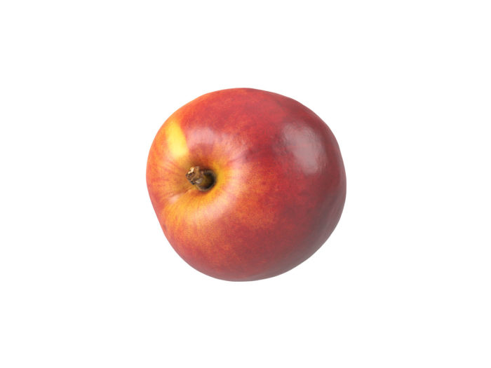 top view rendering of a nectarine 3d model