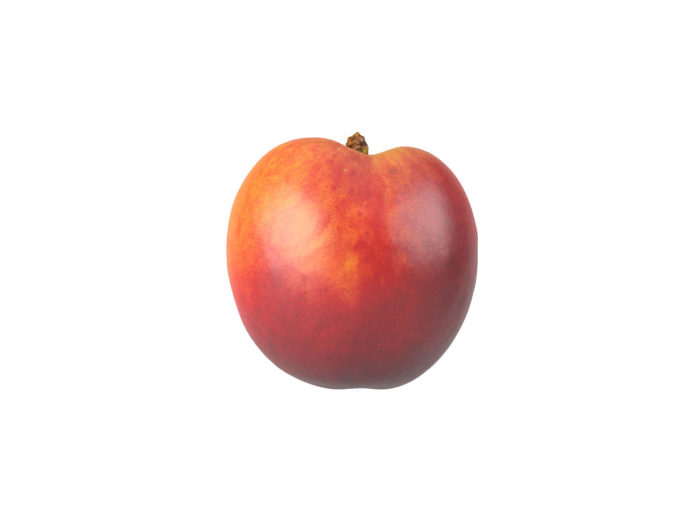 side view rendering of a nectarine 3d model