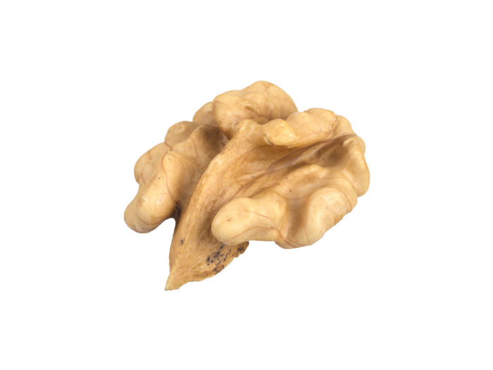 perspective view rendering of a walnut kernel 3d model