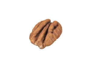 Pecan Nut #1
