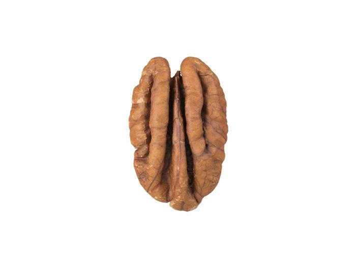 top view rendering of a pecan nut 3d model