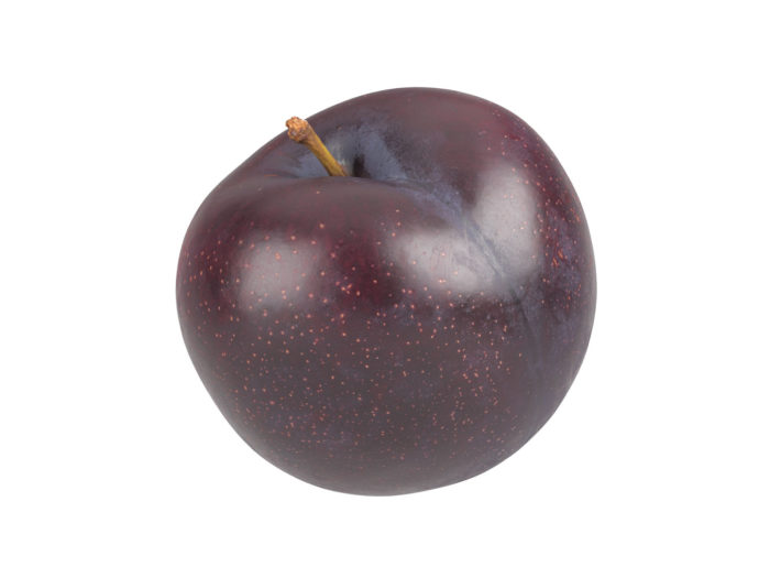 perspective view rendering of a plum 3d model