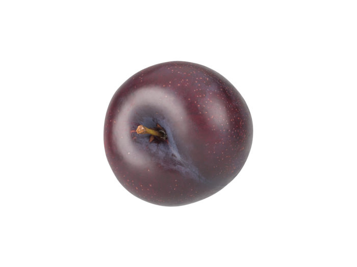 top view rendering of a plum 3d model