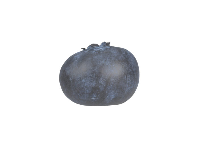 side view rendering of a blueberry 3d model