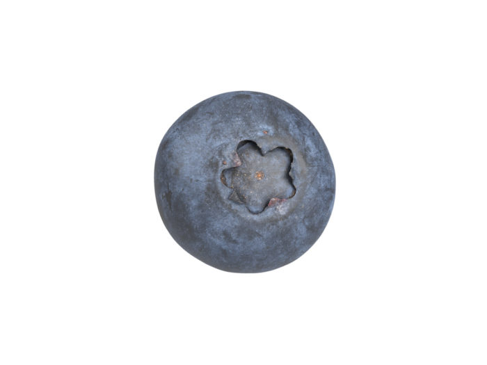 top view rendering of a blueberry 3d model