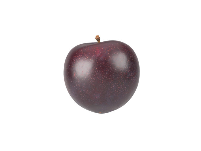 side view rendering of a plum 3d model