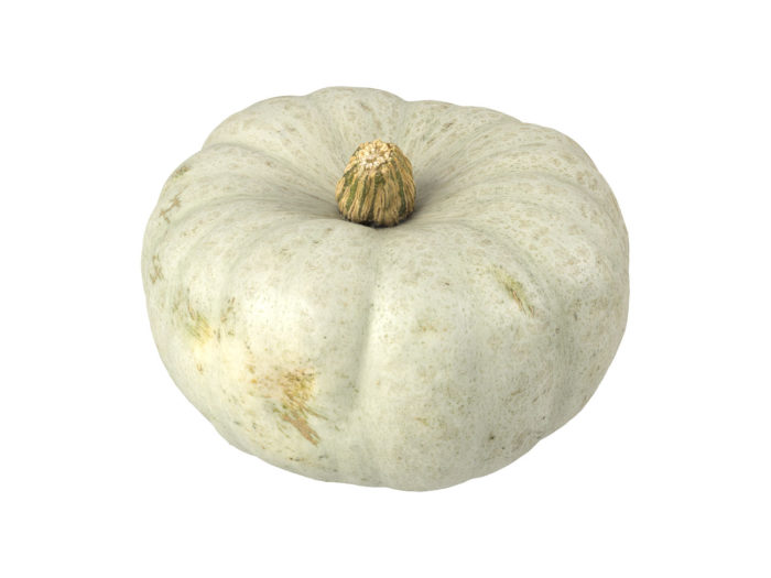 perspective view rendering of a kabocha squash 3d model